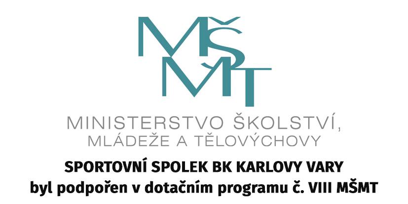 Rozdělení státního rozpočtu 2017 ve sportu - Program VIII., MŠMT ČR